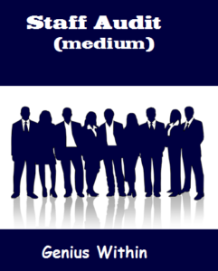 Medium Staff Audit; independent, anonymous, safe, secure