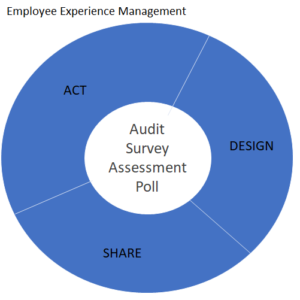 Employee Experience (EX) Management